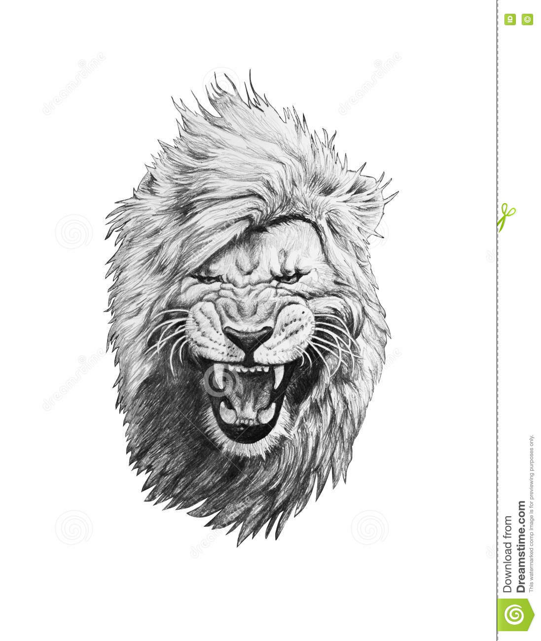 Pencil Drawing Of A Lion Head Stock Illustration Illustration Of Background Face 75074130 There are 114 lion face sketch for sale on etsy, and they cost $11.74 on average. dreamstime com