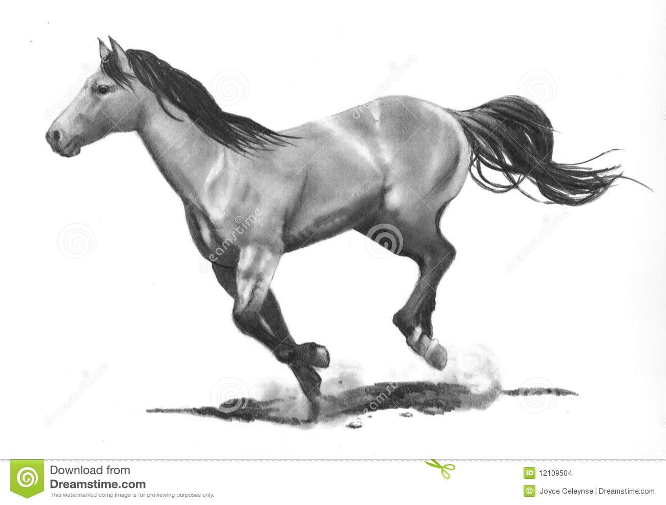 Pencil Drawing Of Running Horse Stock Photo Image Of Distance Animal 12109504