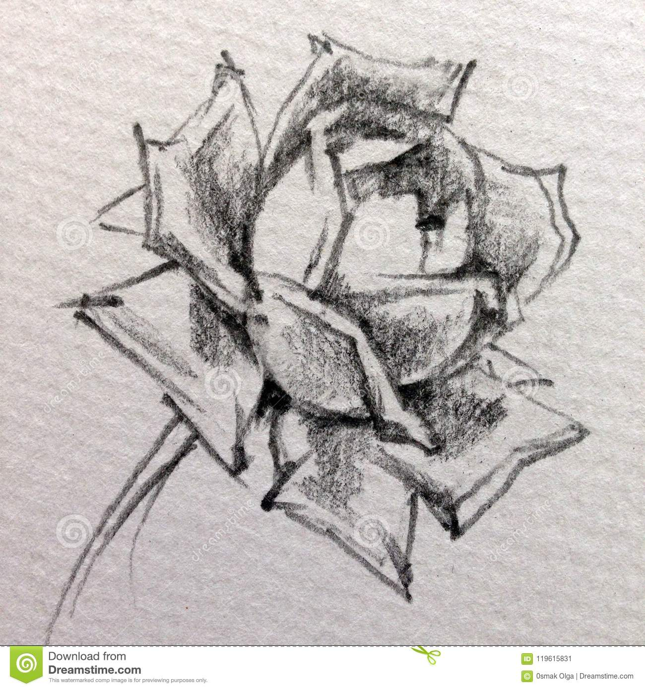 Pencil drawing textured abstract background handmade floral