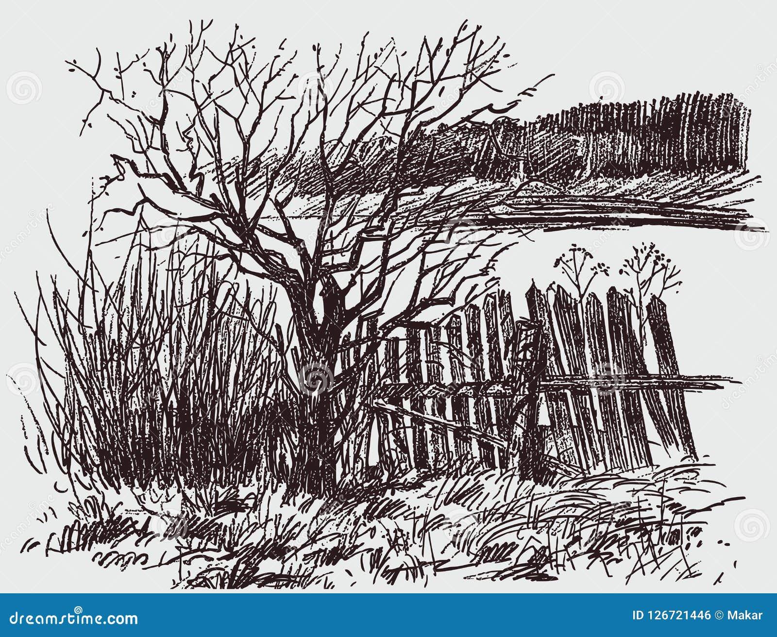 Pencil sketch of a rural landscape in spring