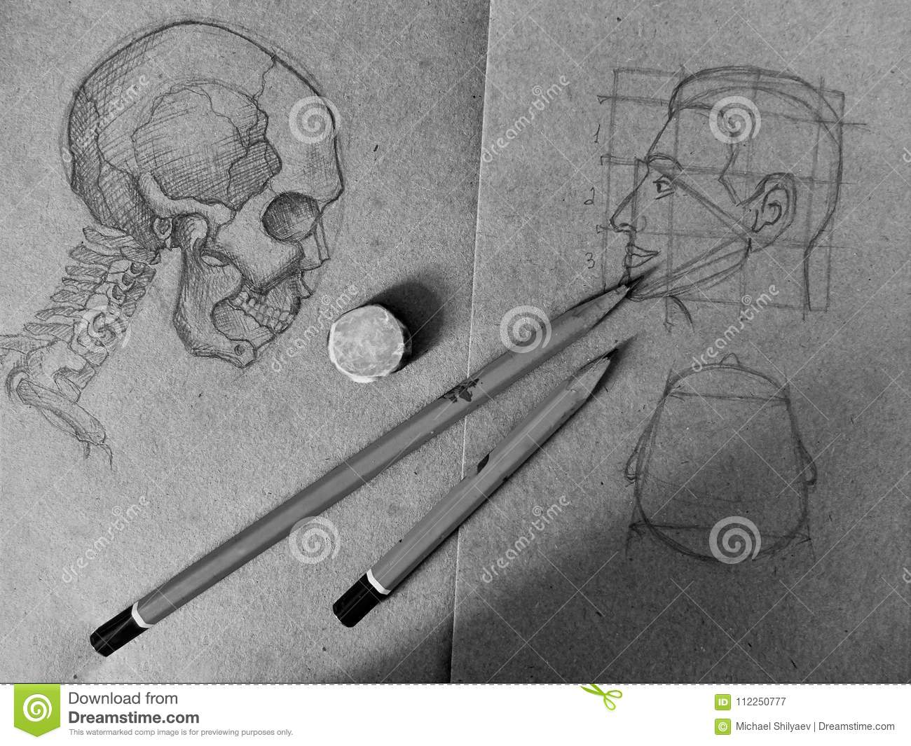 Pencil sketch of a skull and a human head in the old notebook