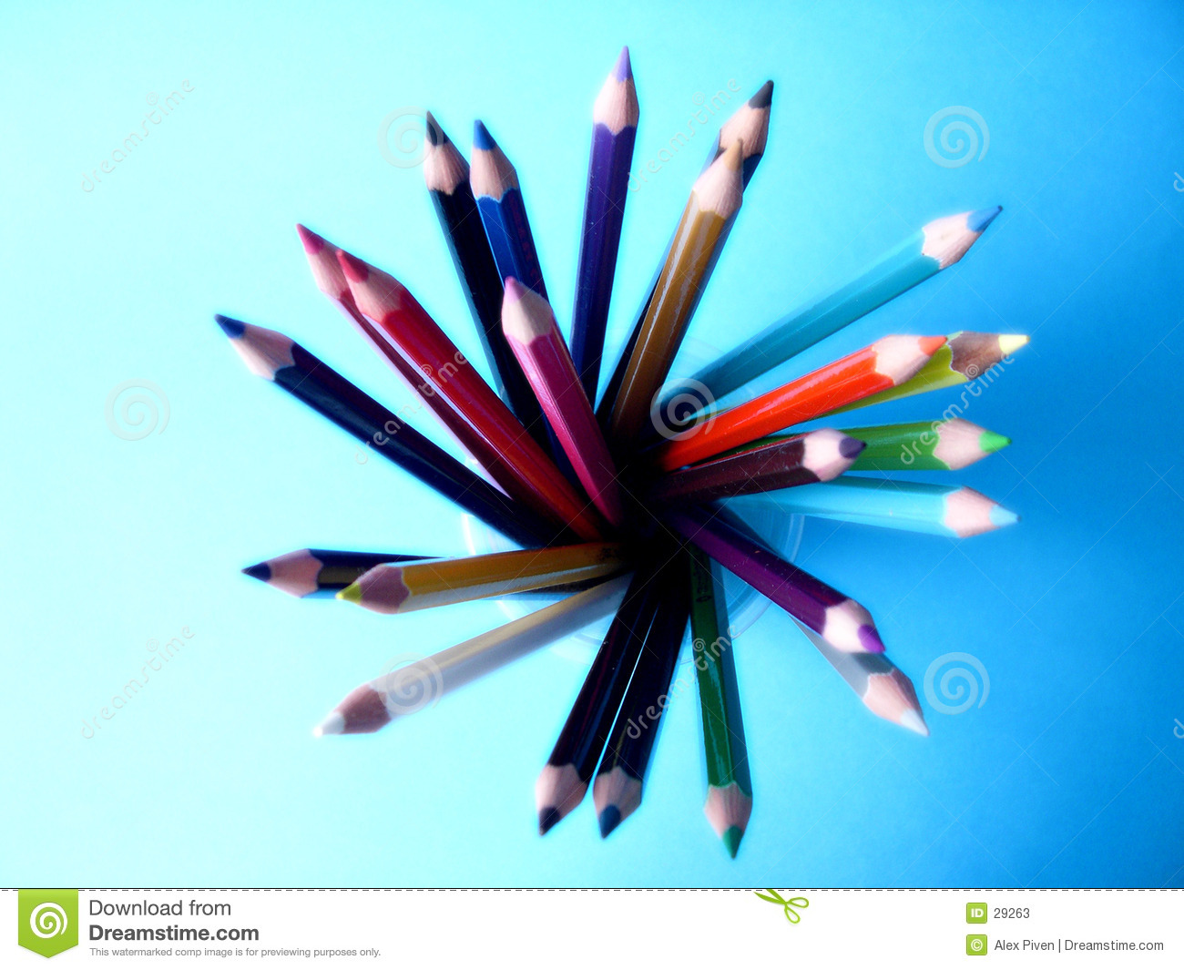 Pencilflower