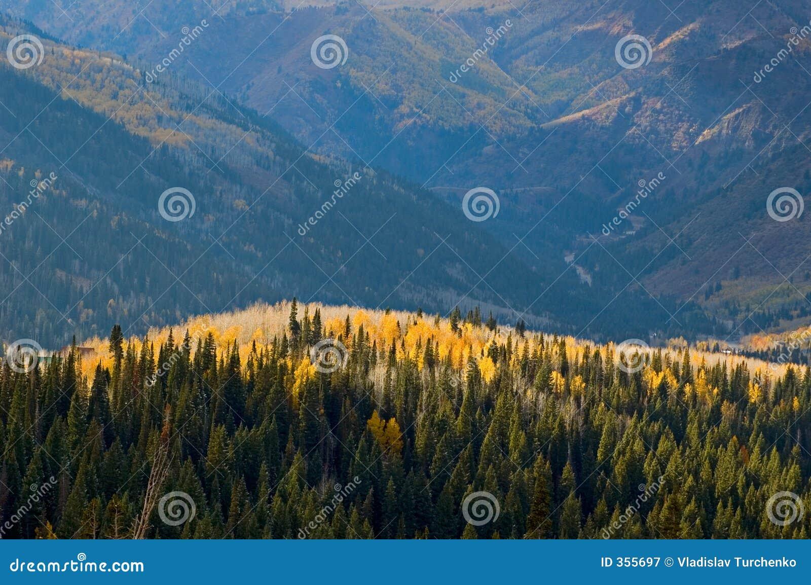 Pendii di montagna nella caduta