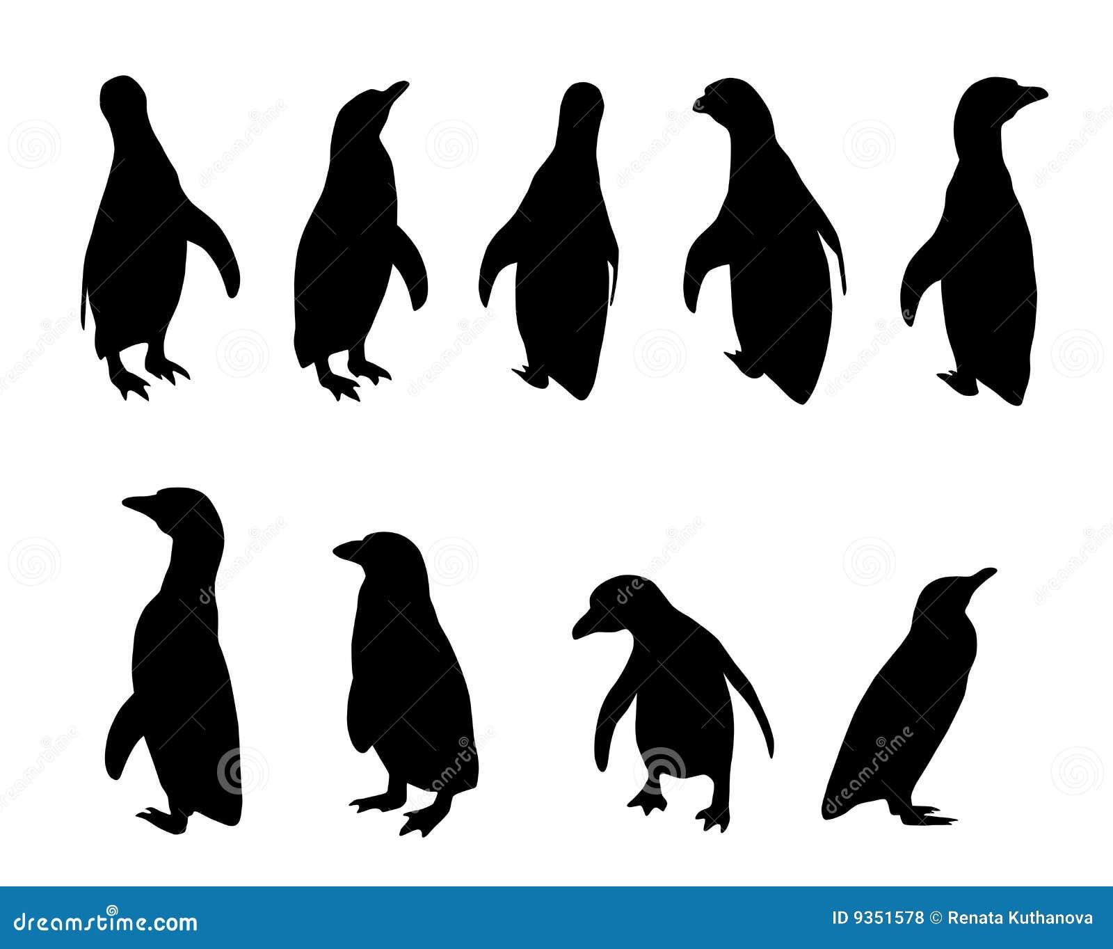 penguin silhouettes stock vector illustration of animal