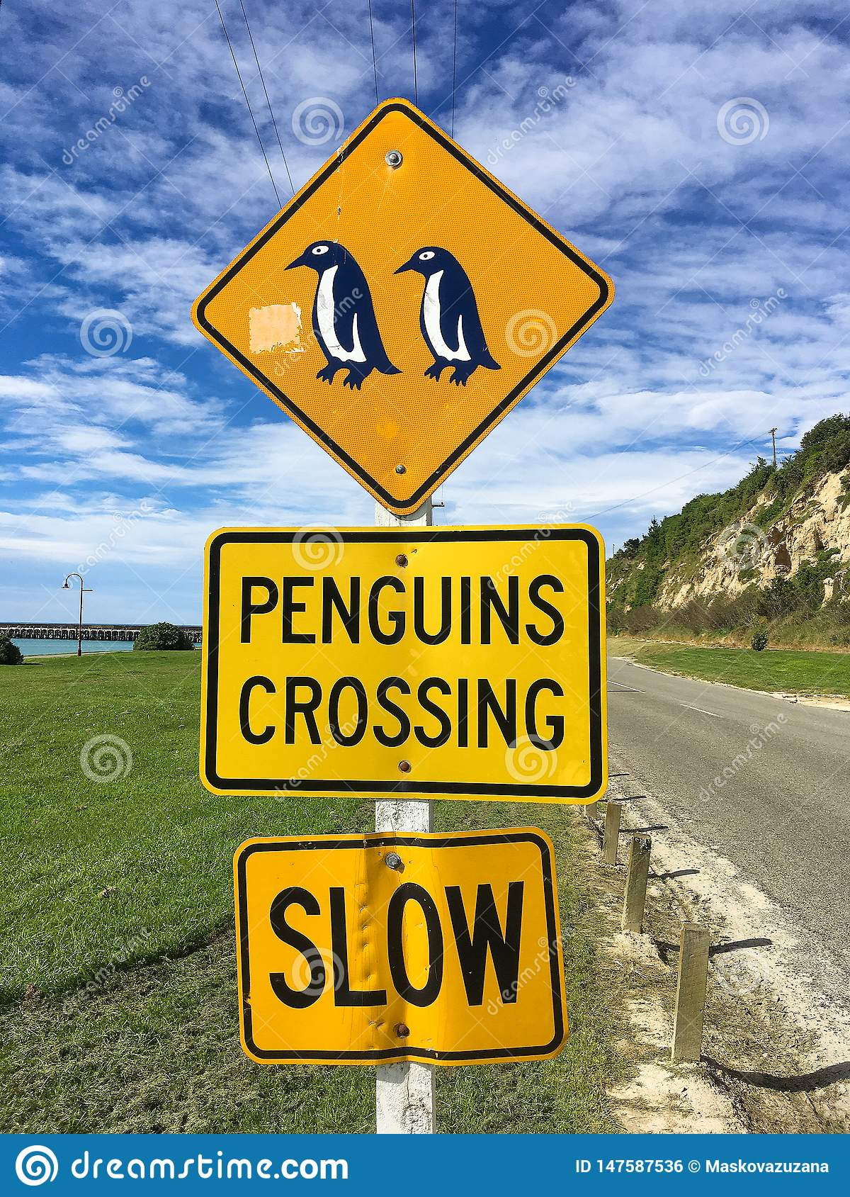 Penguins crossing. Slow down
