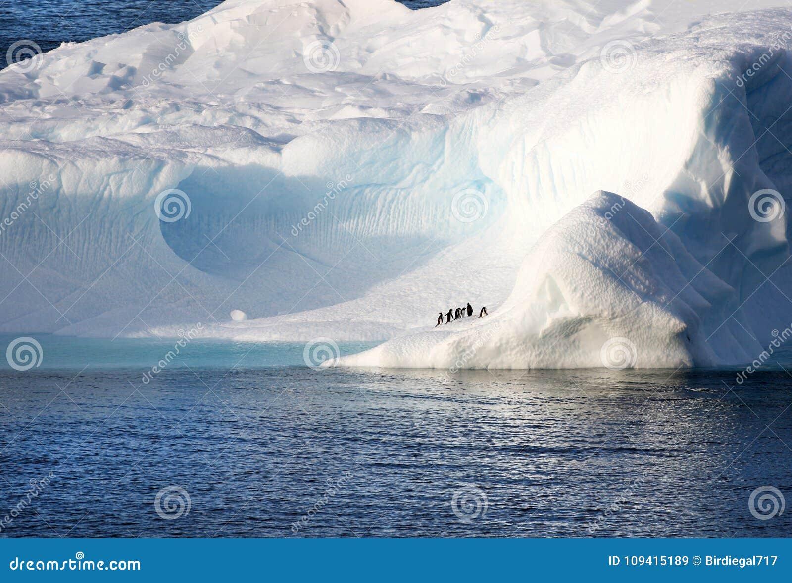 Penguins standing on a huge iceberg. Cavernous blue ice cave. Antarctica Landscape