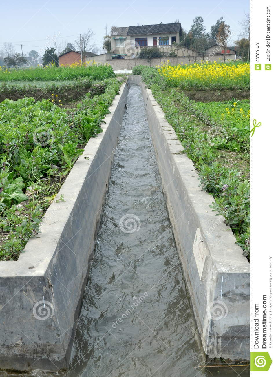 Agricultural Irrigation Canal : Pengzhou china irrigation canal on farm stock image