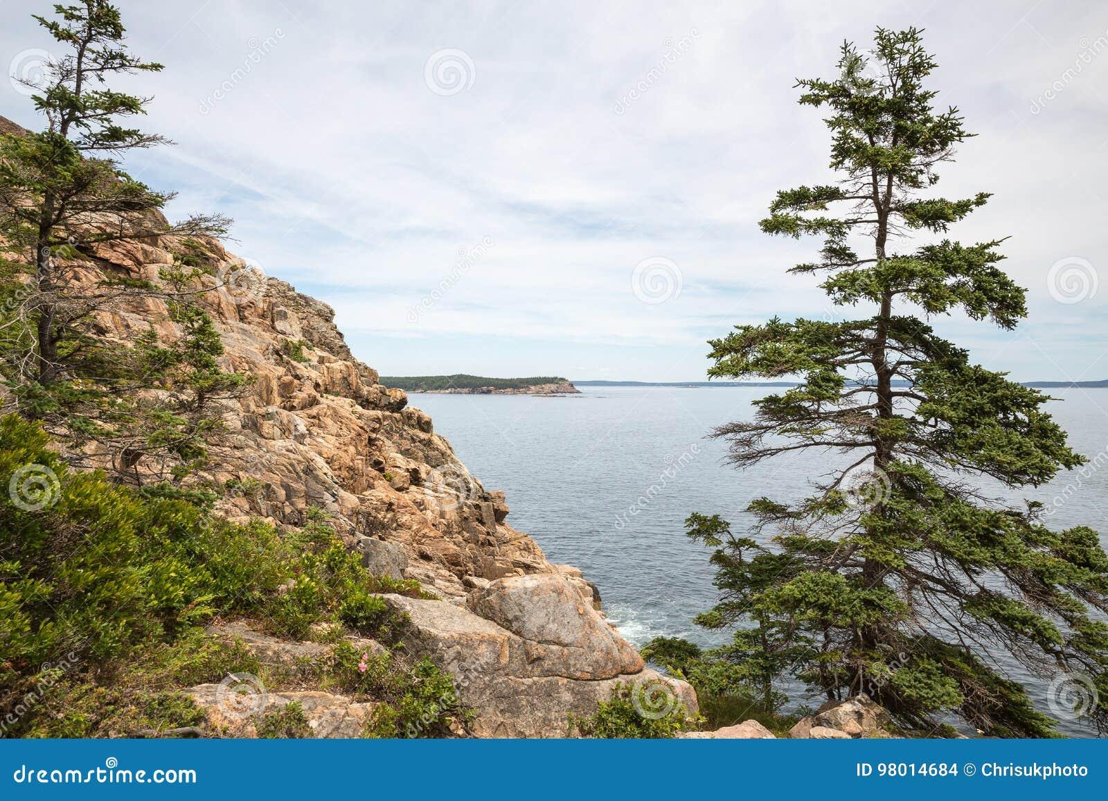 Penhasco da lontra no parque nacional EUA do Acadia