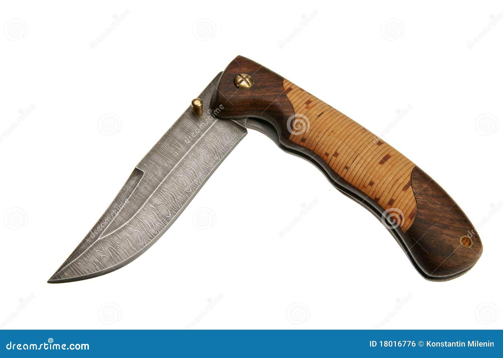 Penknife Stock Photo Image Of Knife Hardwood Safety