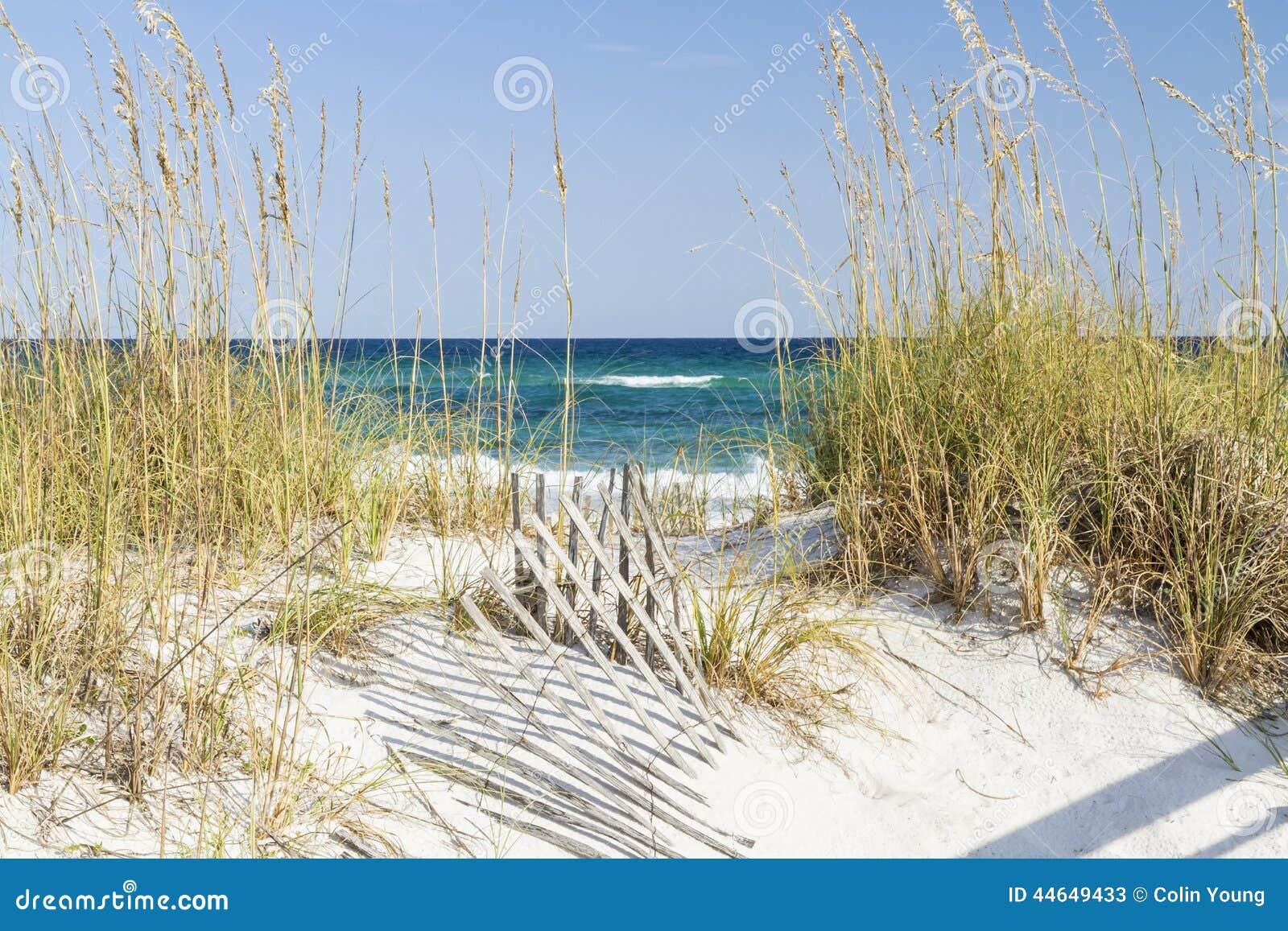 Pensacola Beach Sand Dune Islands