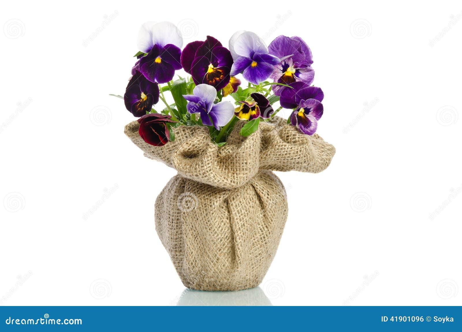 Pensamientos hermosos en un florero