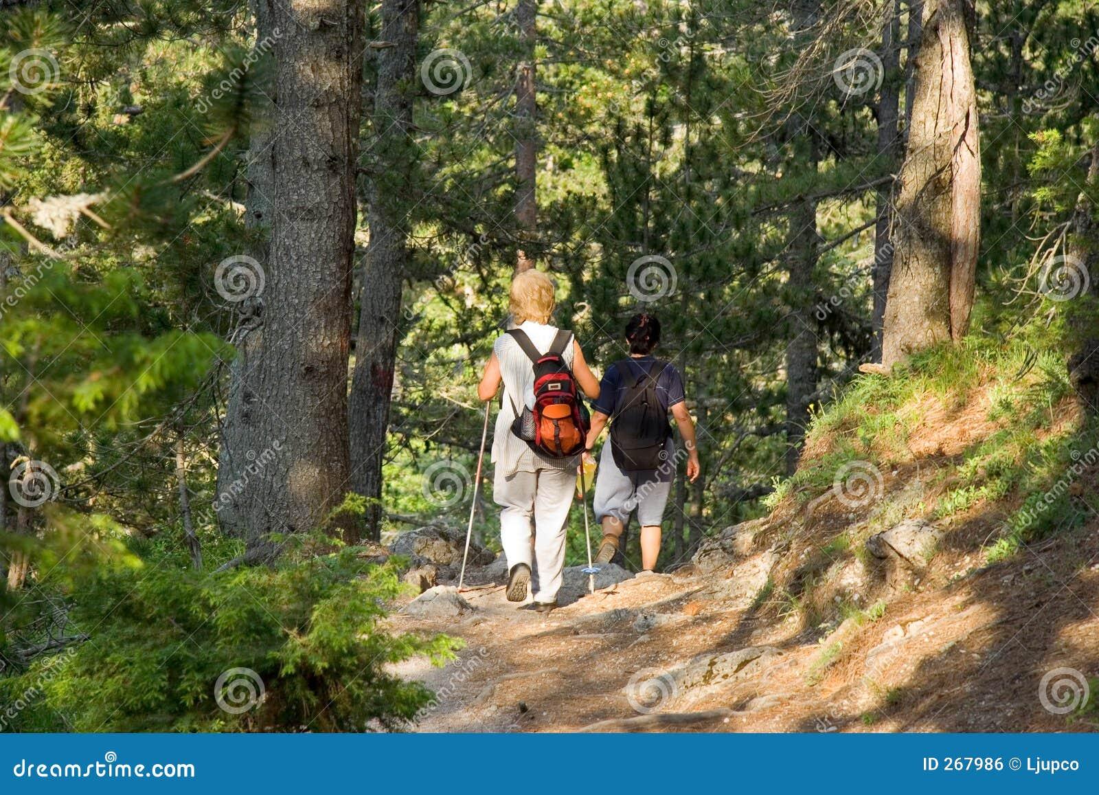 Pensionärer som trekking trän