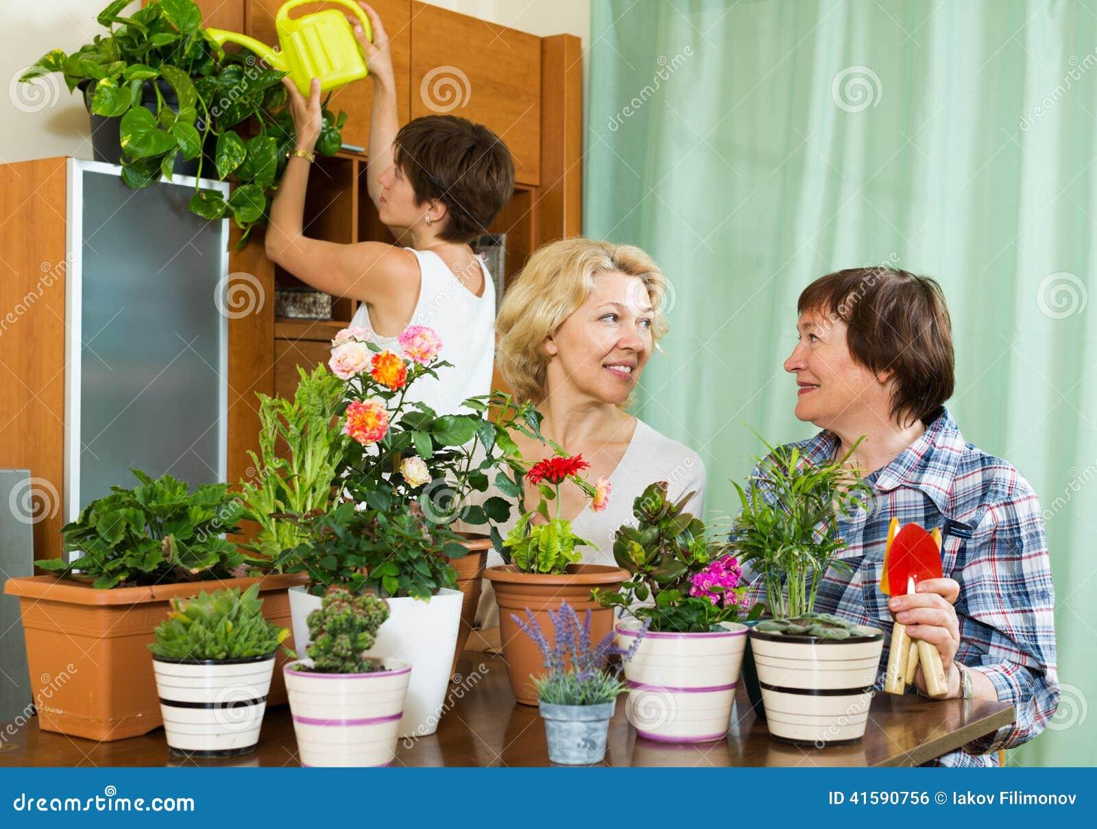 Pensionista superiores e menina que importam-se com as plantas home