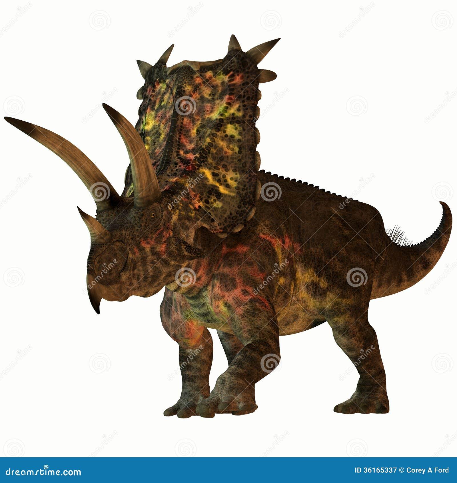 Pentaceratops on White