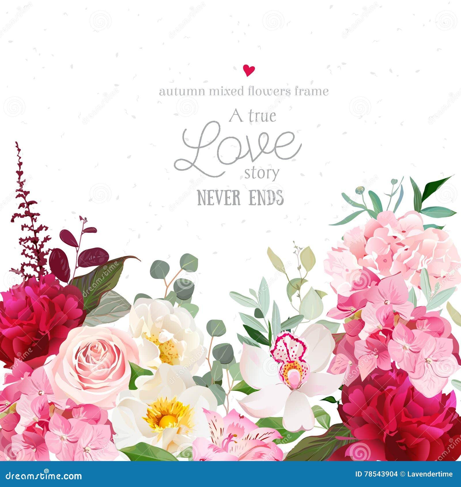 Peonías rojas de Borgoña, rosa del rosa, hortensia, tarjeta del diseño del vector de la orquídea