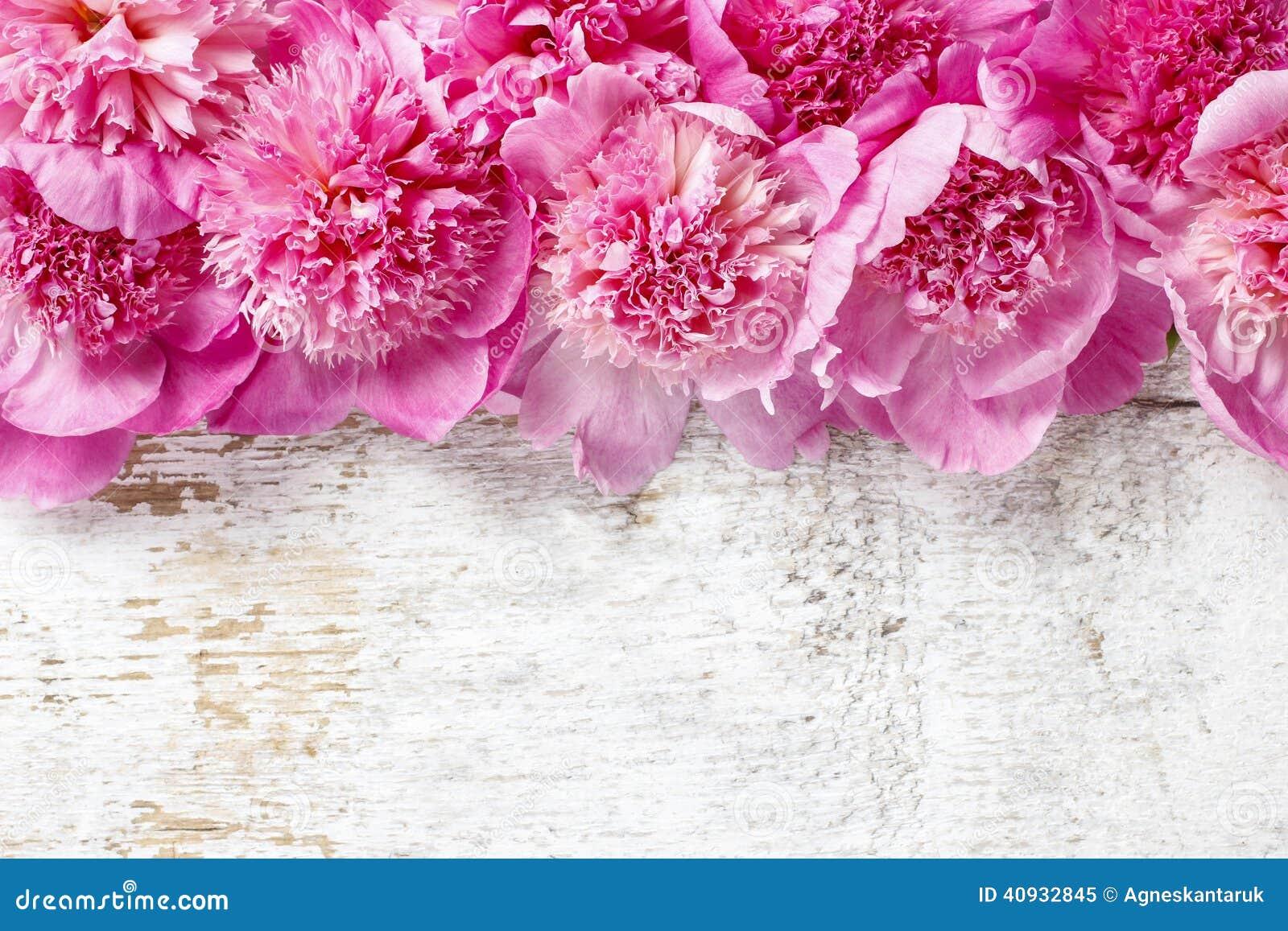 Peonías rosadas imponentes