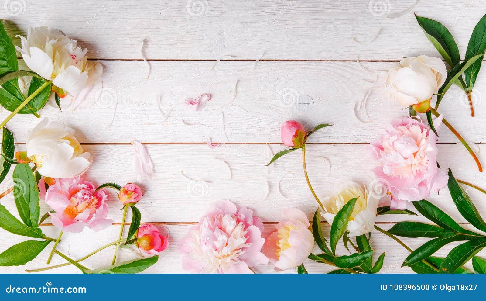 Peonías rosadas imponentes en el fondo de madera rústico blanco Copie el espacio