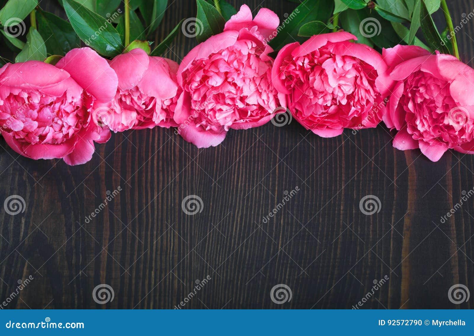 Peonie rosse e rosa su una tavola di legno Bello fondo floreale del fondo… con i fiori variopinti