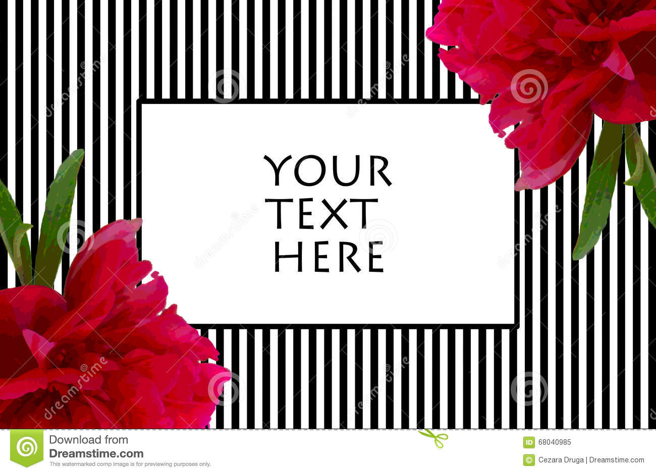 Peony Black And White Stripes Frame For Text Stock Illustration