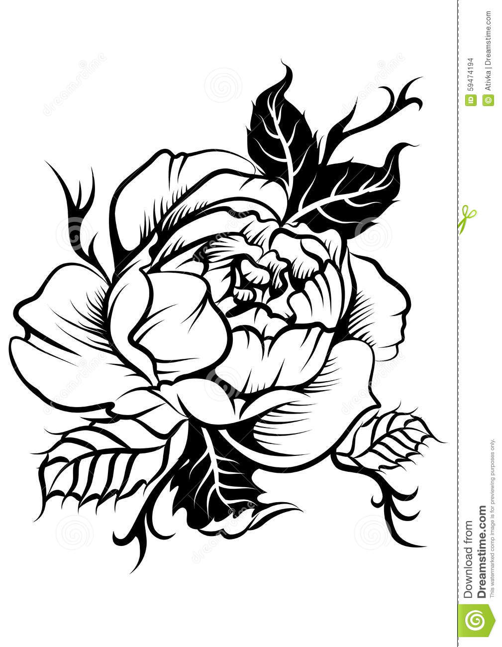 Peony Flower In Tatto Style Stock Illustration Image