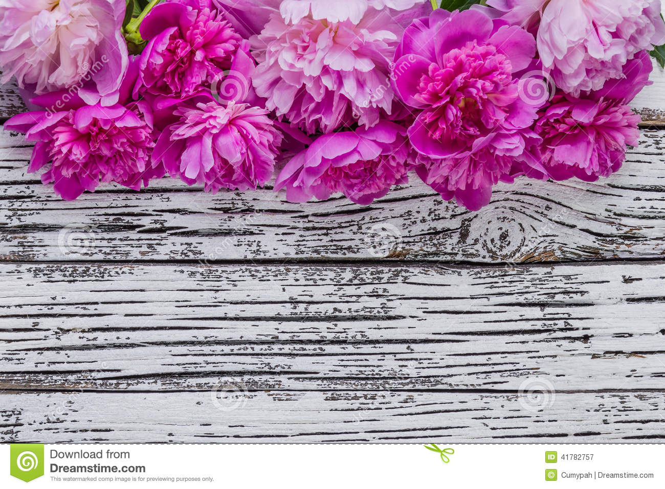 White Peonies Background
