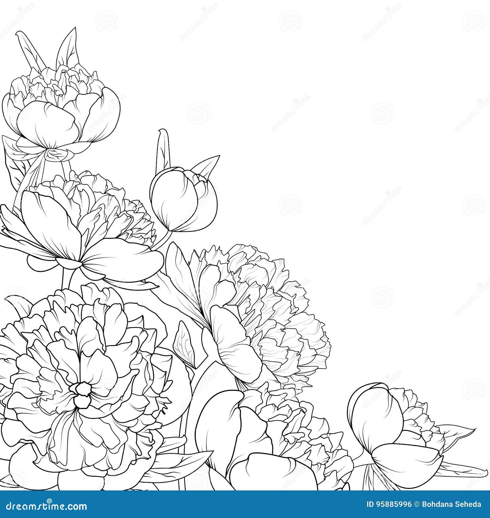 Flower garden sketch - Royalty Free Vector Download Peony Rose Garden Flowers
