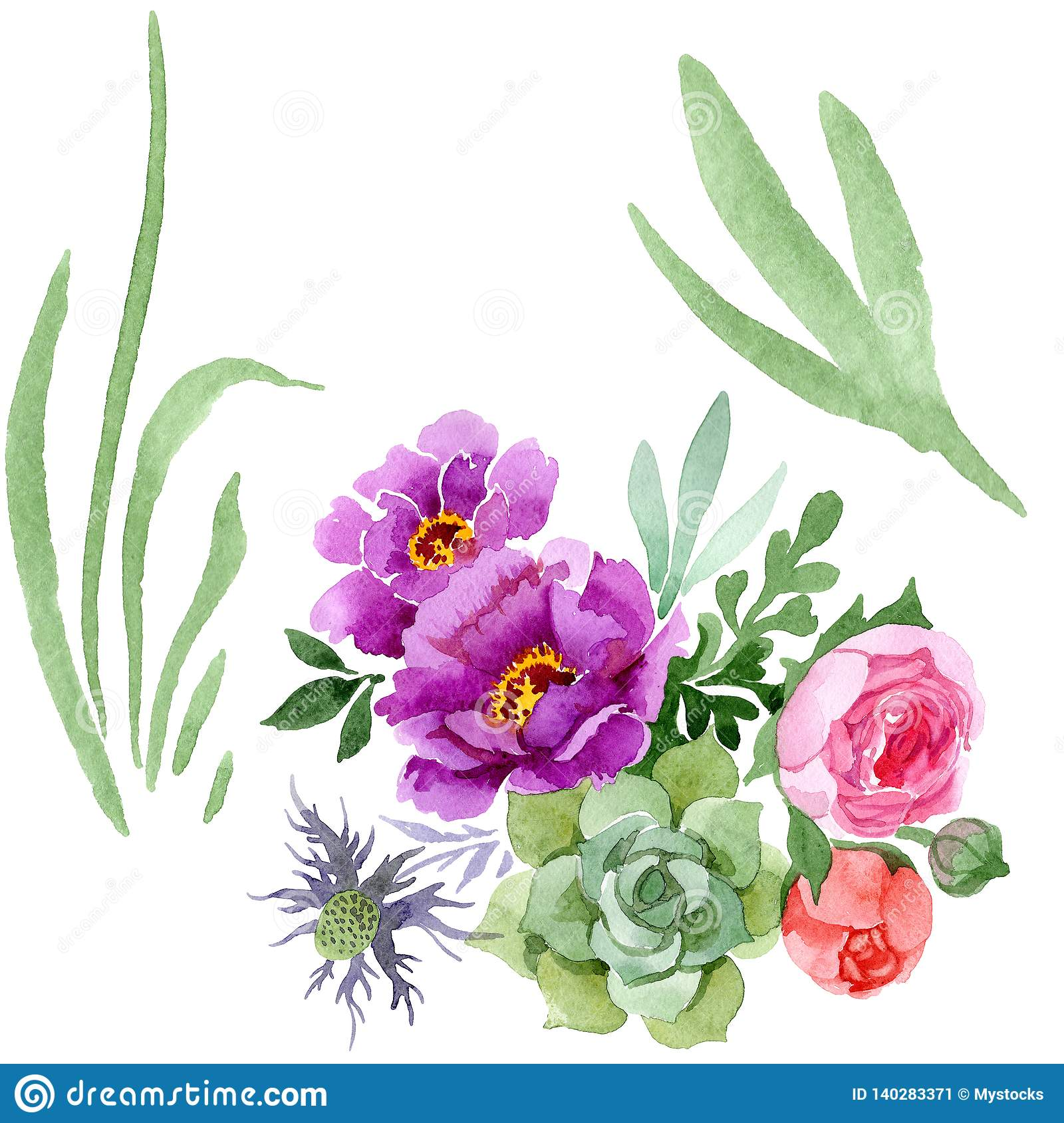 Peony And Succulent Bouquet Botanical Flower Watercolor Background Set Isolated Bouquet Illustration Element Stock Illustration Illustration Of Meadow Ornament 140283371