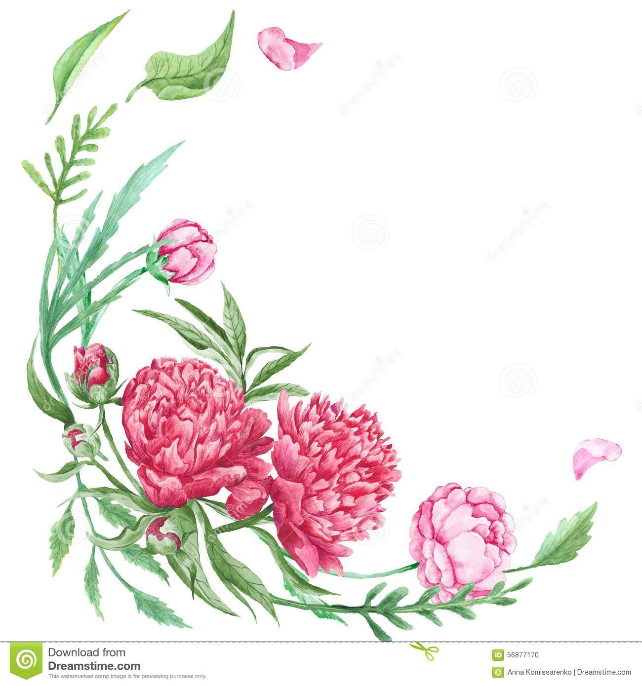 Peony Summer Floral Corner Stock Illustrations 562 Vectors Clipart