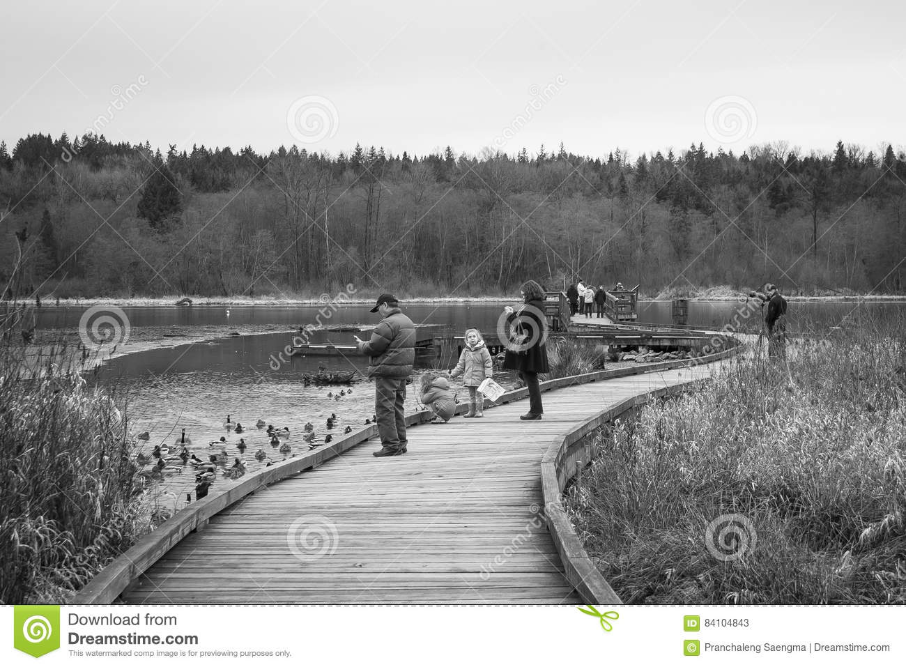 People Activities at Burnaby Lake Public Park B/W