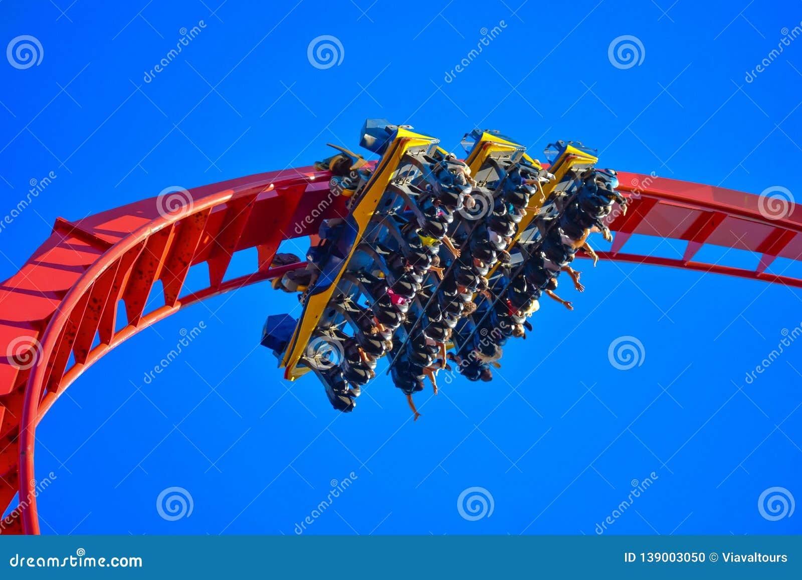 . People enjoying amazing inverted rollercoaster at Bush Gardens Tampa Bay