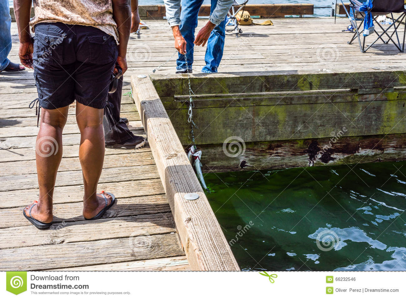 People fishing on the pier stock photo image 66232546 for People catching fish