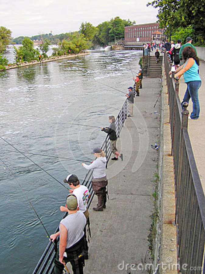 People fishing for salmon in the oswego river editorial for Salmon river ny fishing