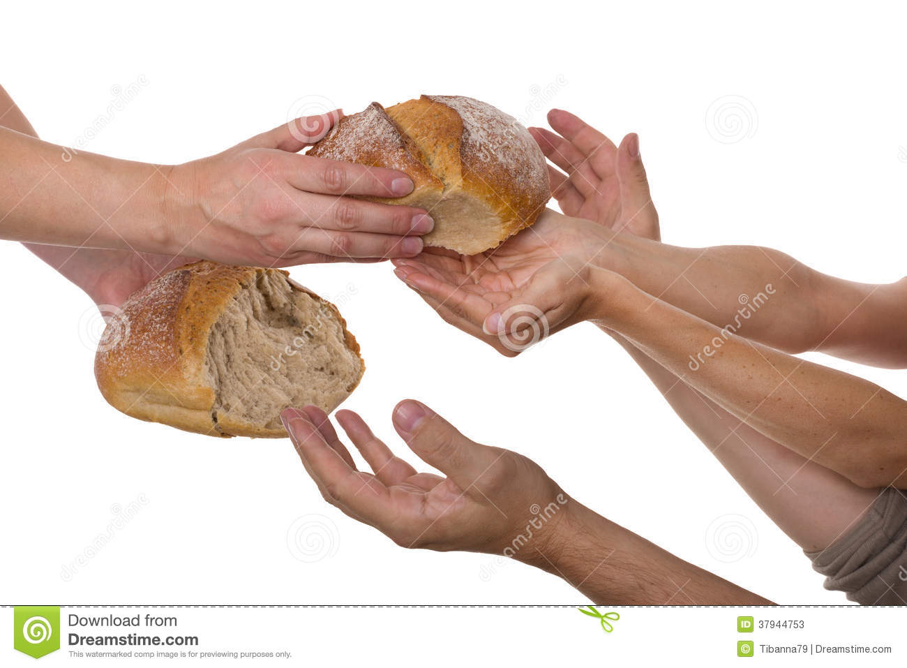 People grabbing for food stock image. Image of desperate ...