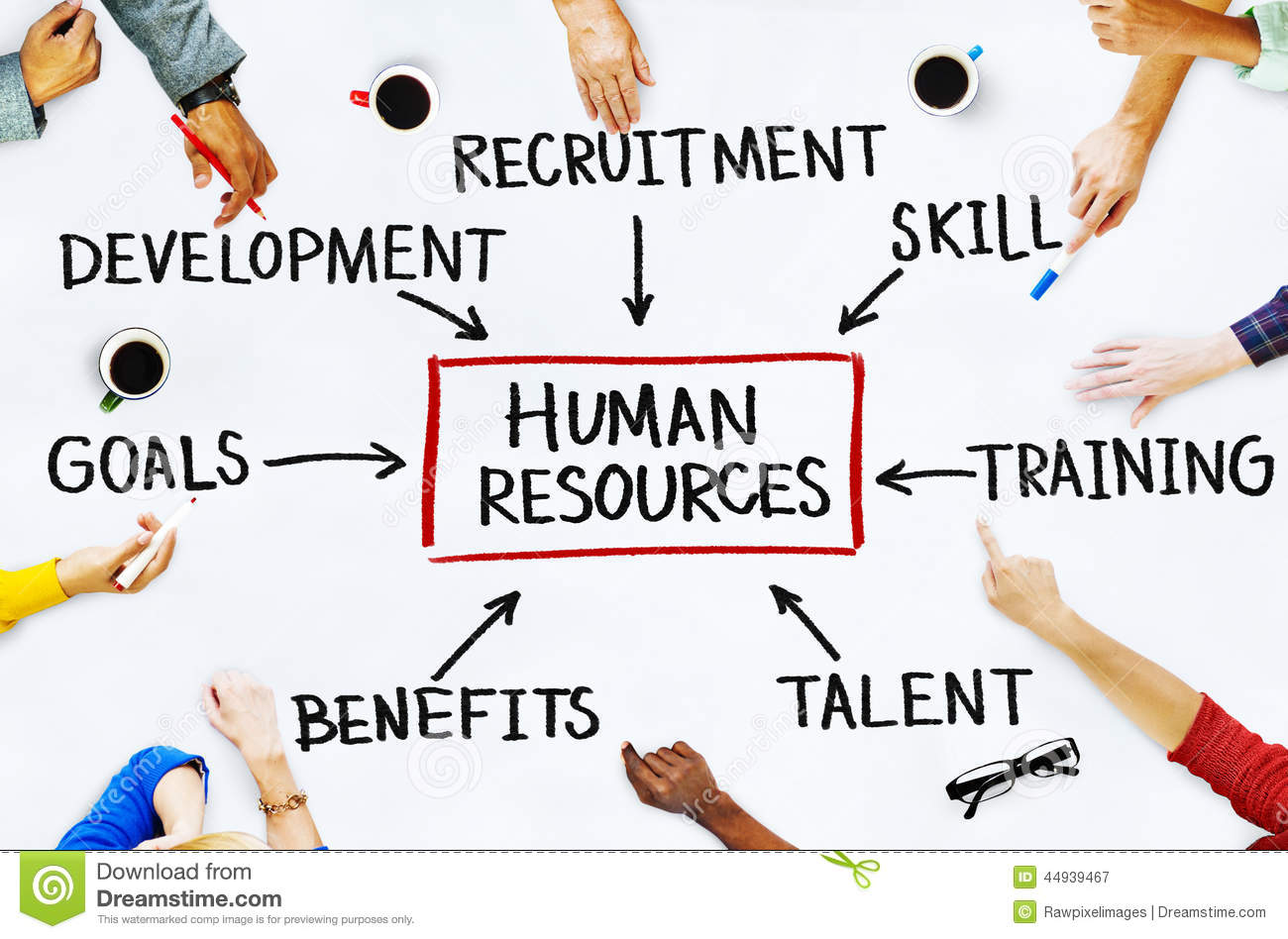 p5 human resouces in management Earn an affordable bachelor of science in human resource management online or on-site at university of maryland university college.
