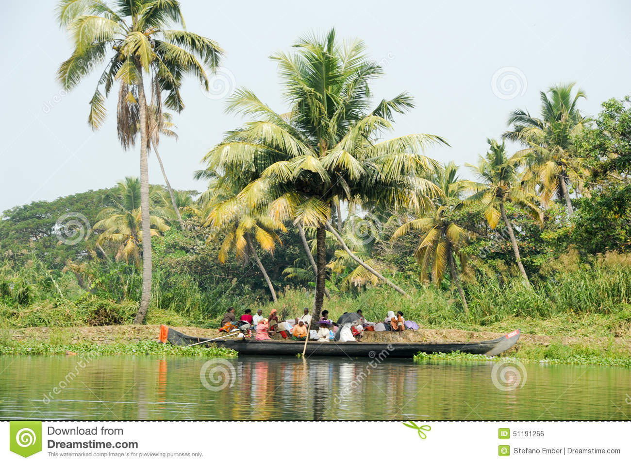 Alleppey India  city photo : ... tree alleppey india january backwaters alleppey india 51191266