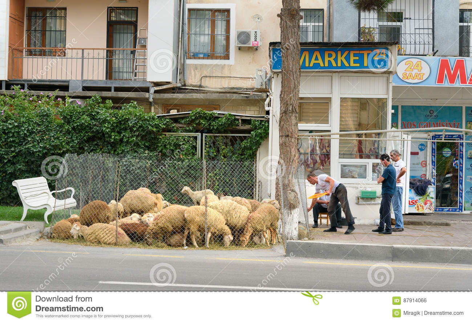 People sale sheeps during Bakrid festival Eid al-Adha. Baku