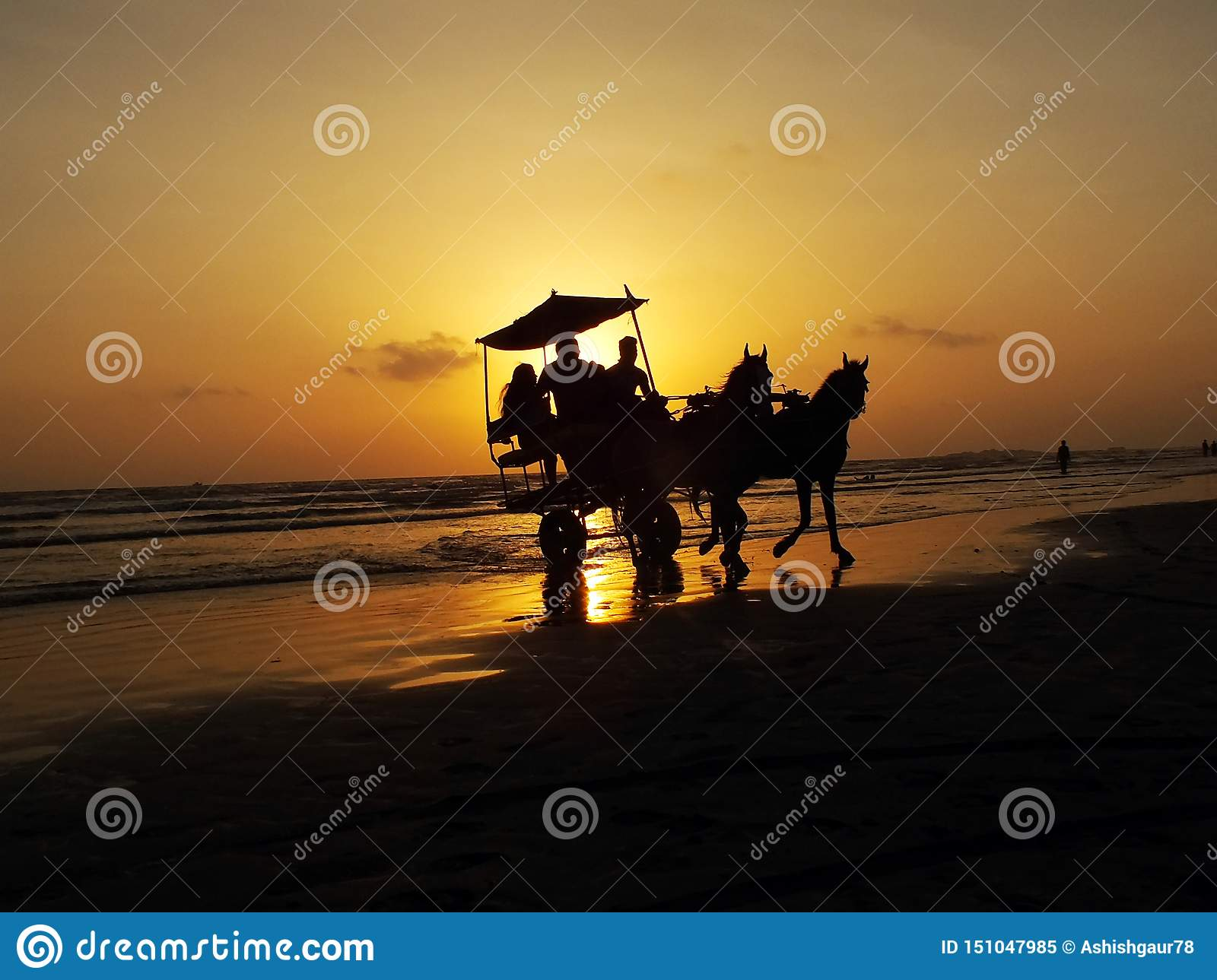 People sitting in horse chariot on sea beach