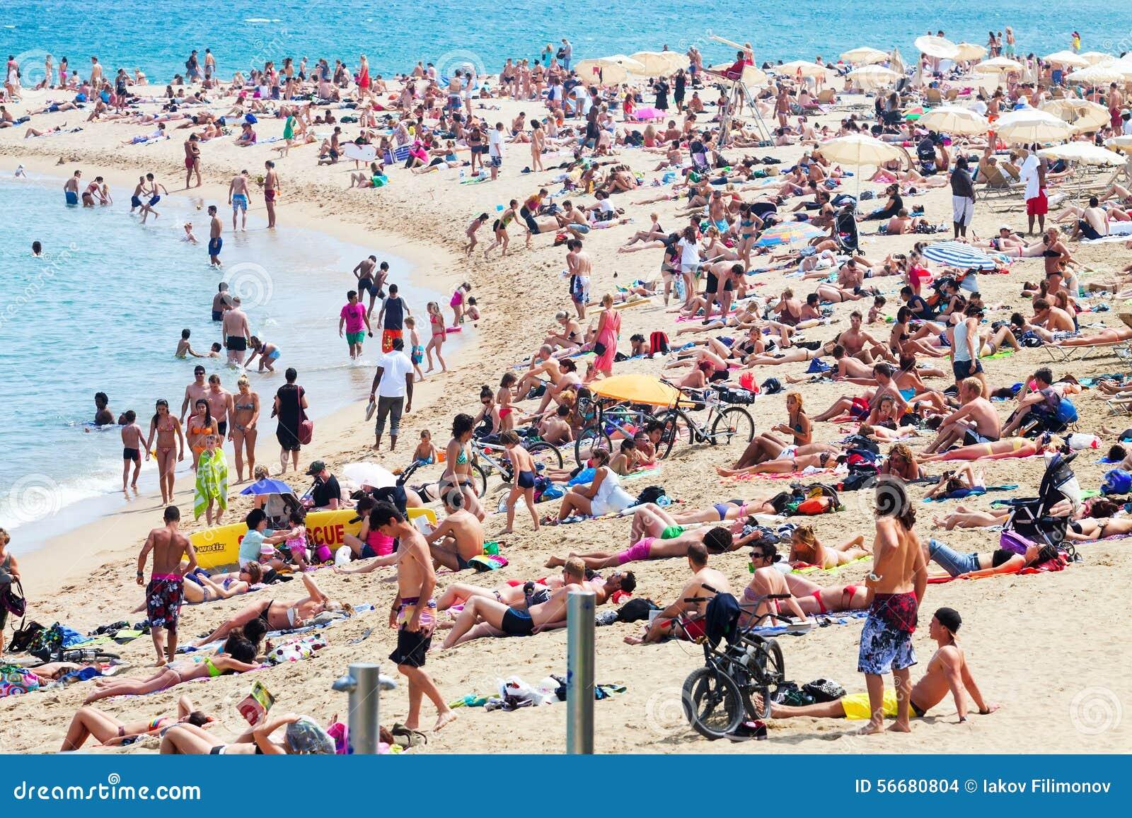 People Sunbathing On The Beach