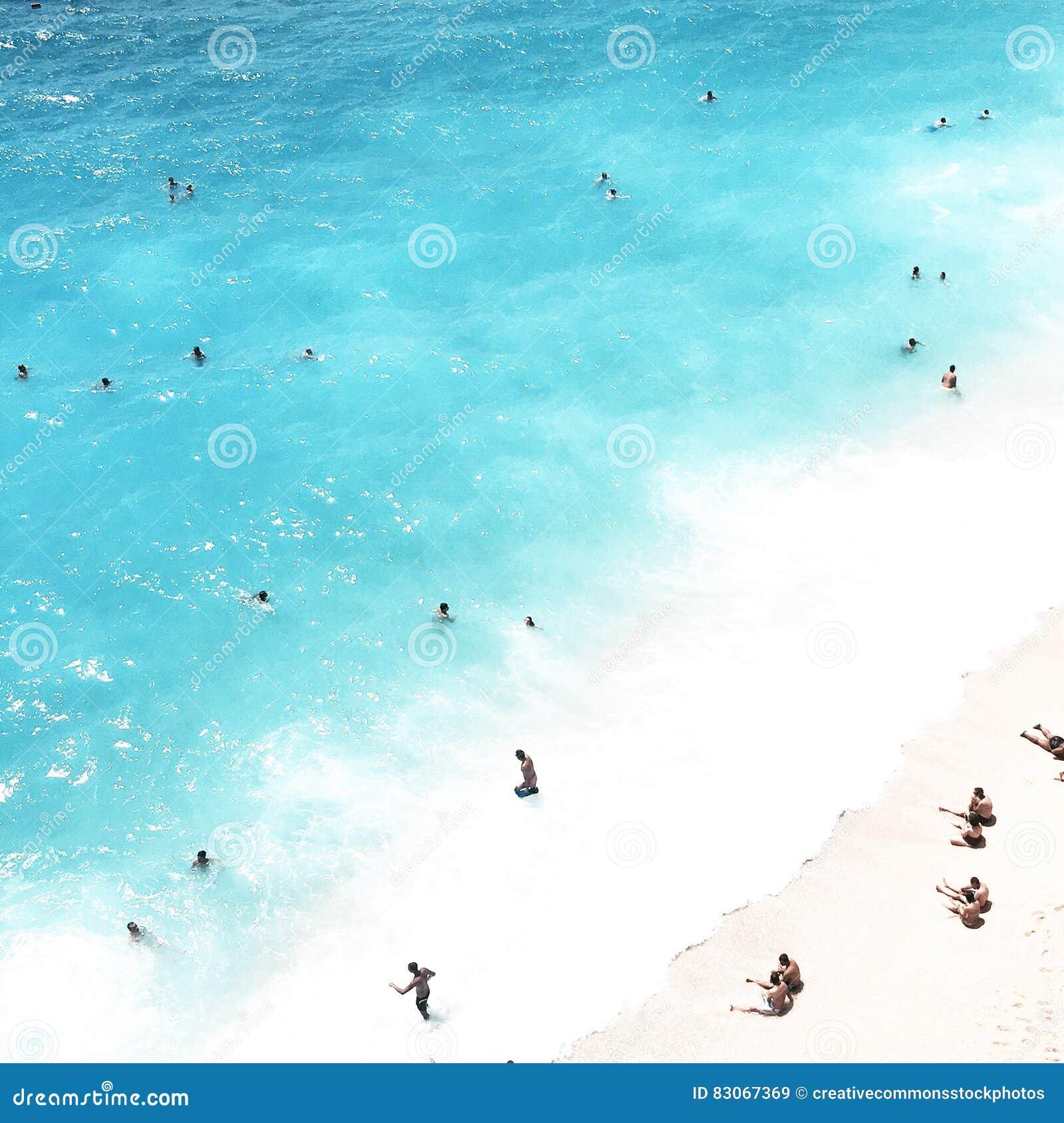 People Swimming In The Sea Picture. Image  83067369 e5b9771b5f