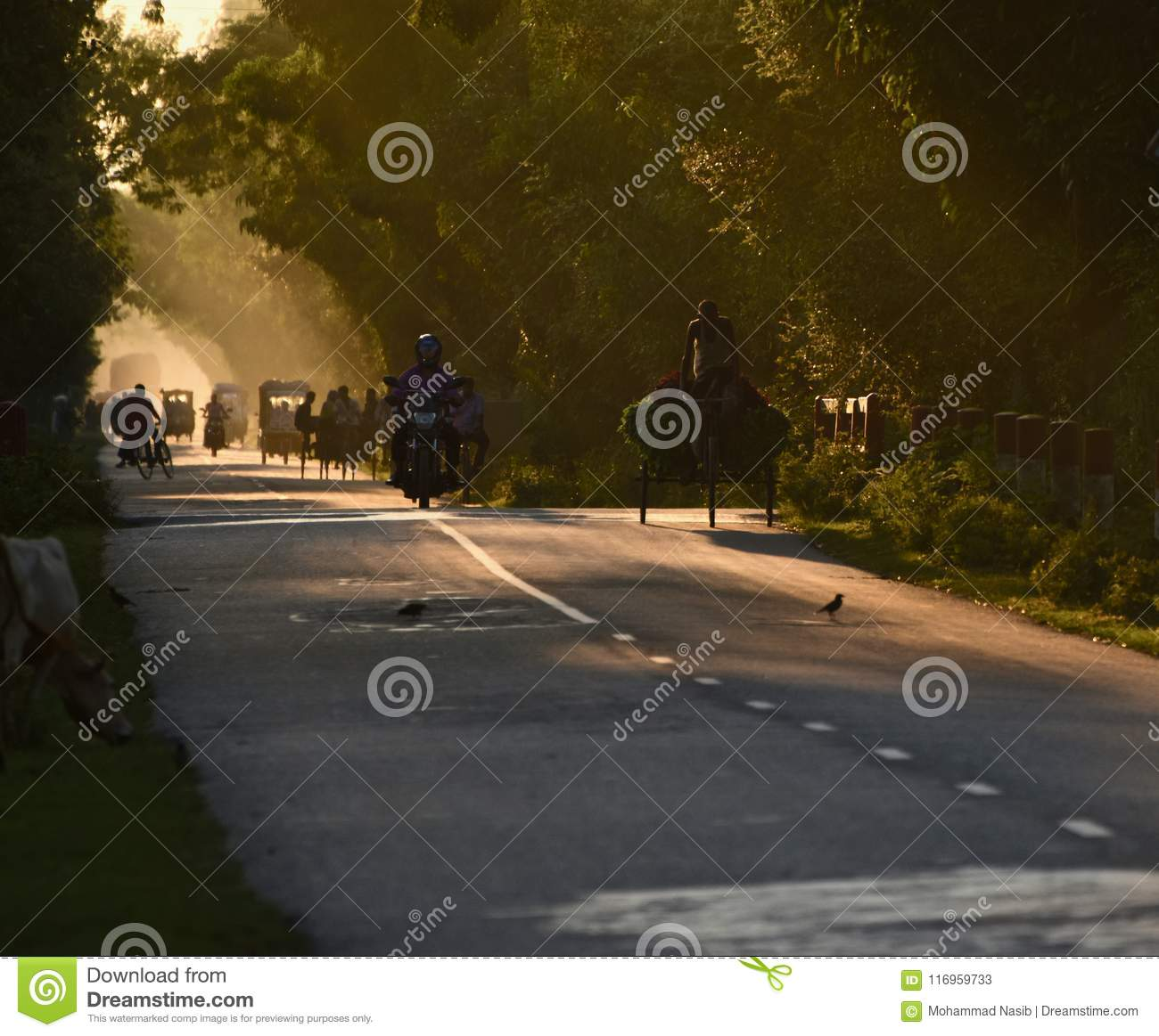 Download People Travelling On A Highway Road In The Afternoon Editorial Stock Photo - Image of typical, royalty: 116959733