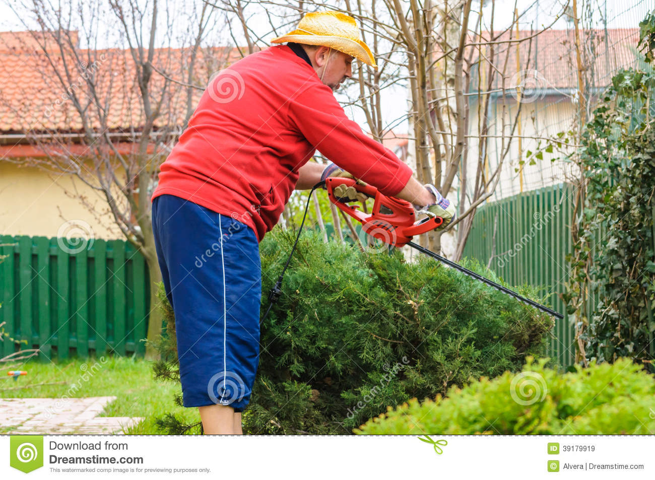 People Using Trimmer Tool In Garden Stock Photo Image