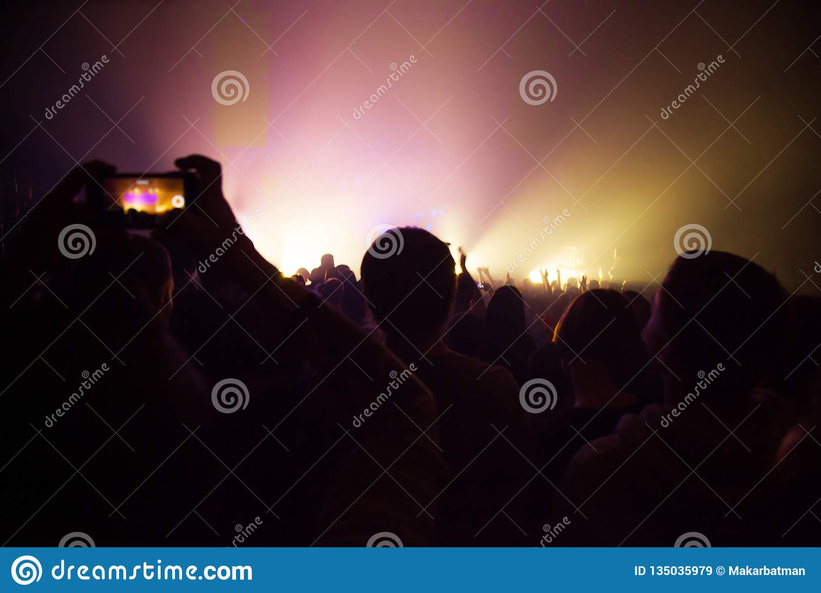 People watching a concert and someone shooting photo and video with a phone