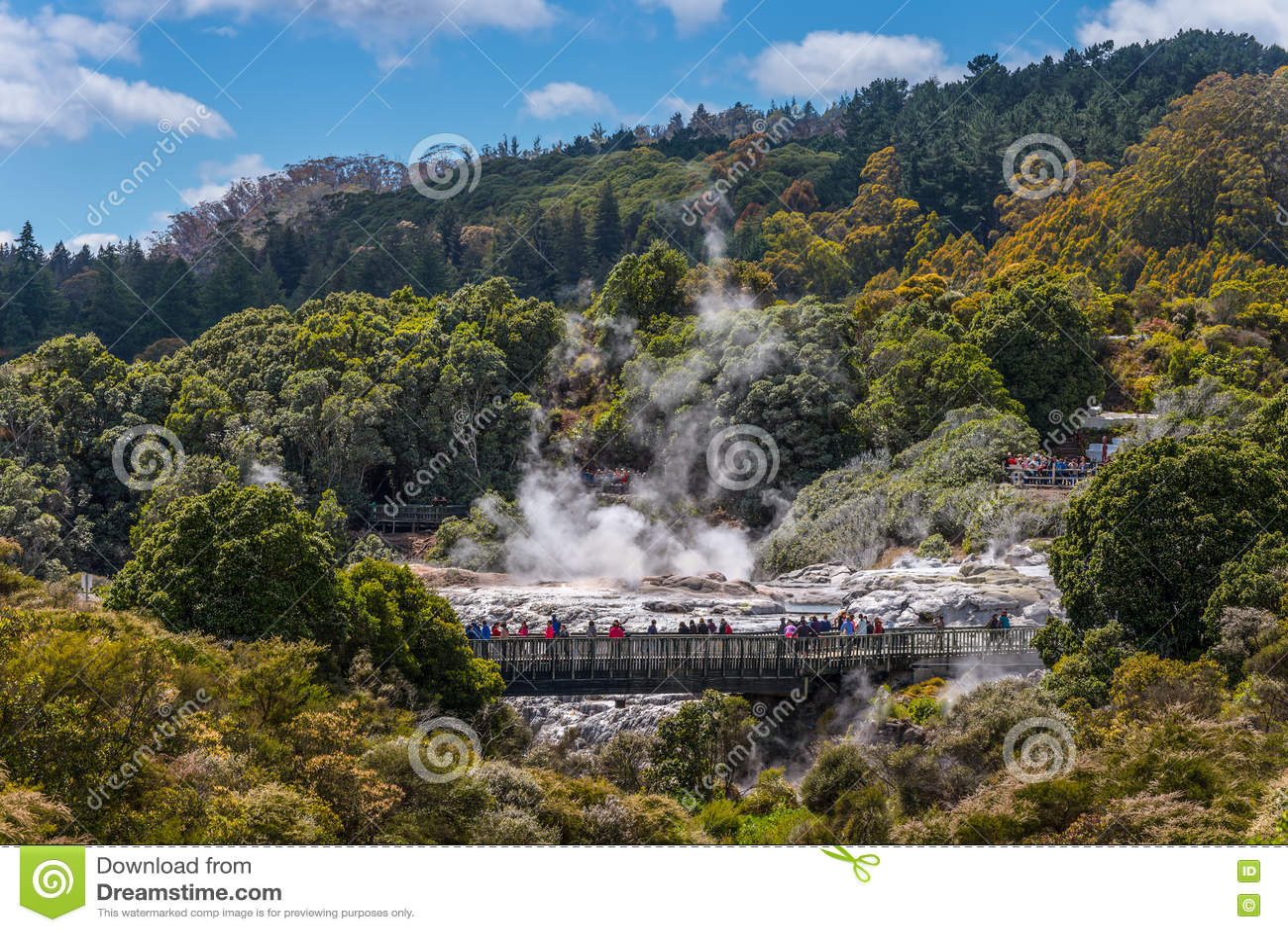 People watching Pohutu Geyser in Rotorua, New Zealand
