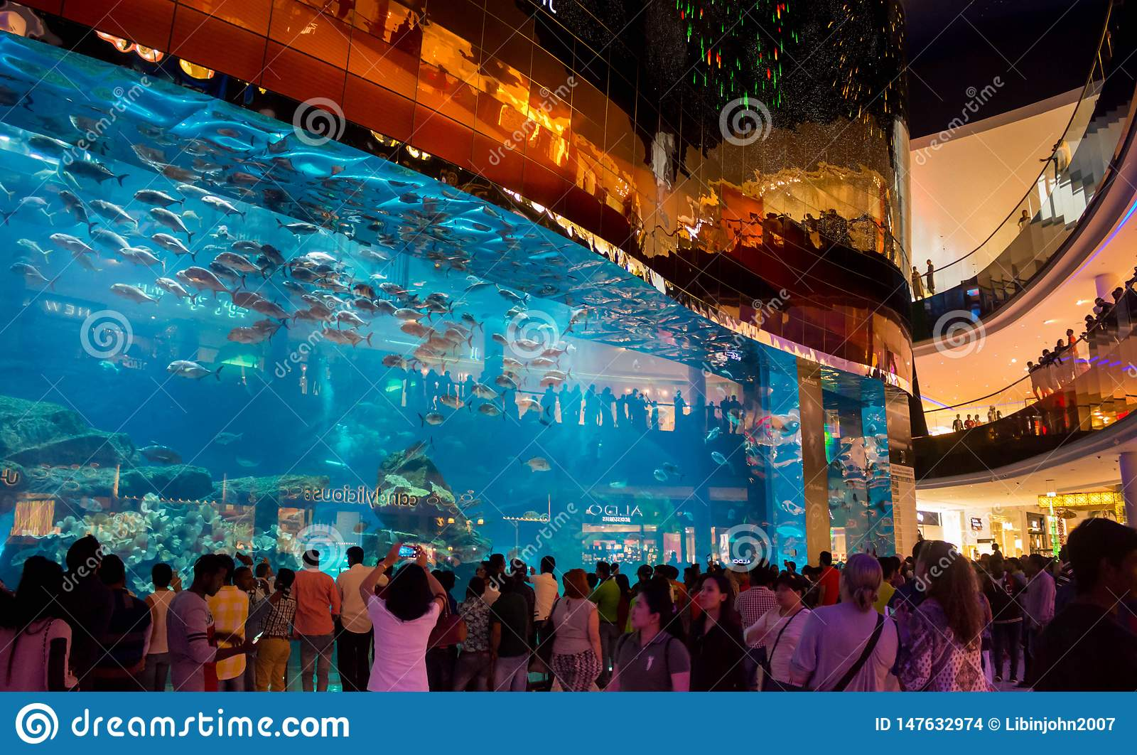 Peoples watching Largest aquarium and fishes at Dubai Mall