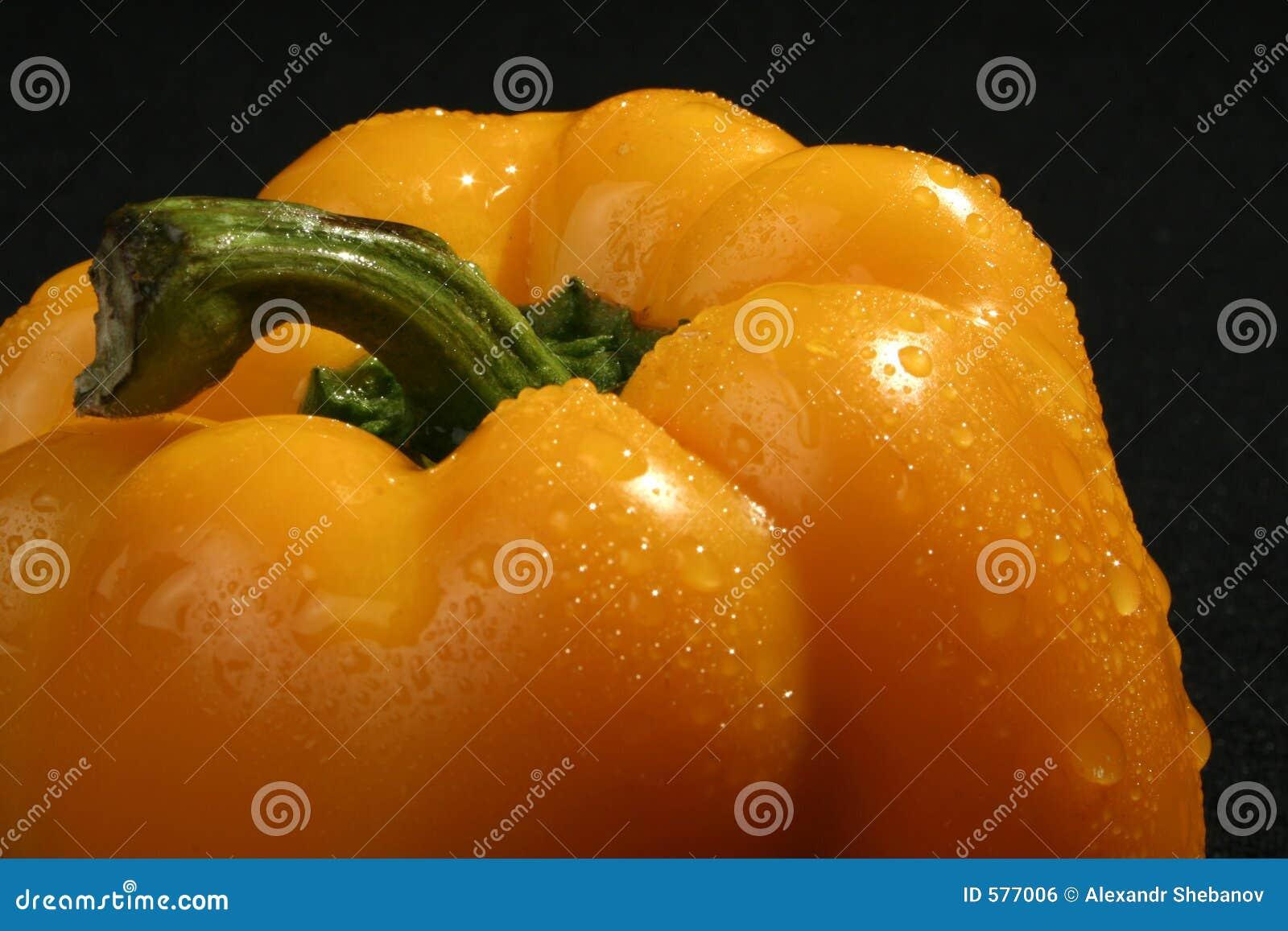 Pepe immagine stock libera da diritti immagine 577006 for Kiwi giallo piante acquisto