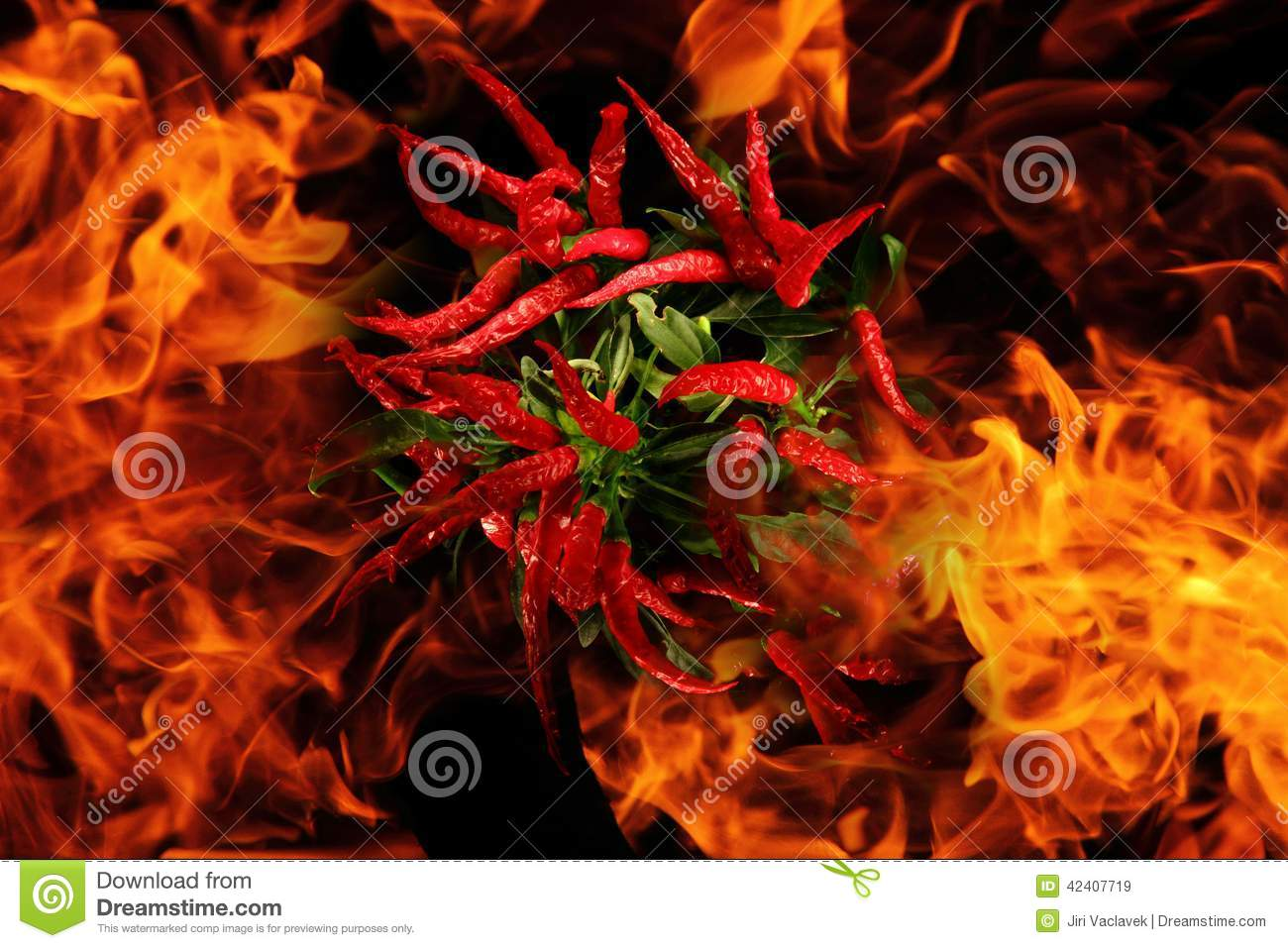 Peperoncino rosso nelle fiamme