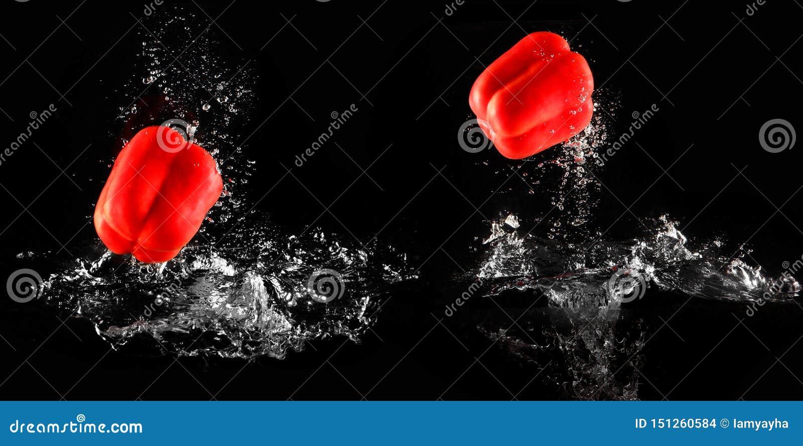 Peperone dolce con la spruzzata dell acqua e bolla isolata per la verdura Singolo calo fresco del peperone in acqua Paprica rossa