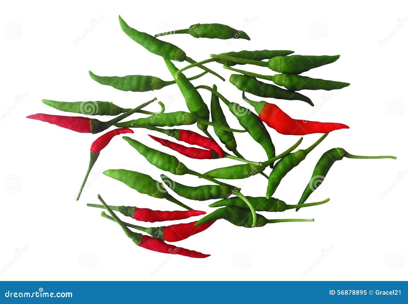 Peperoni di peperoncino rosso caldo rossi e verdi