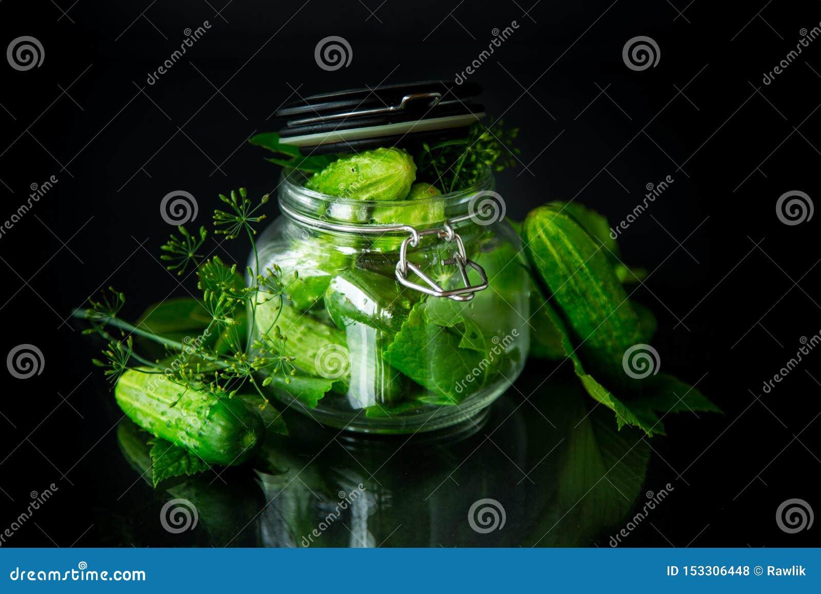 Pepinos e especiarias com as ervas para enlatar em um frasco