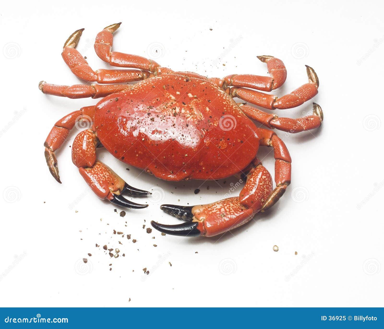 Pepper kraba